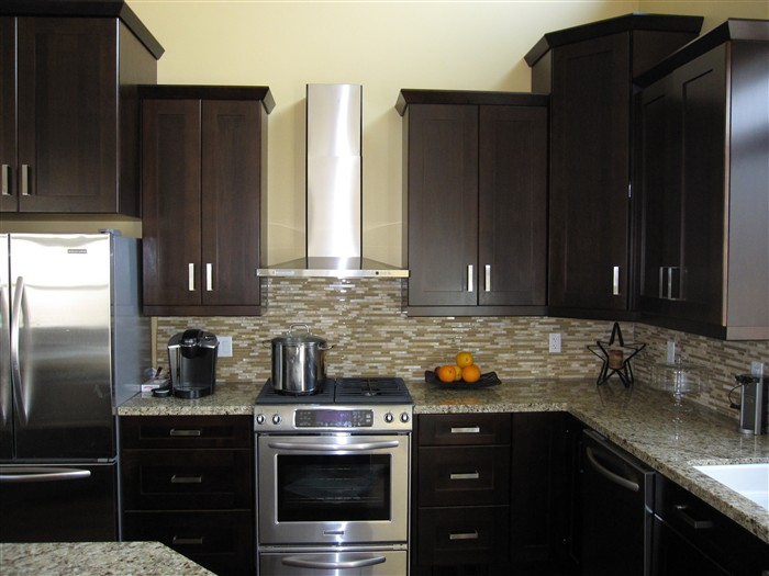 Espresso shaker wood kitchen bathroom cabinets for Kitchen designs espresso cabinets